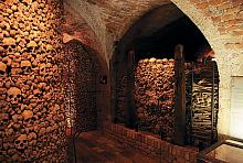Archeologists discovered coffi ns 700 years old in the Brno Bone Ossuary